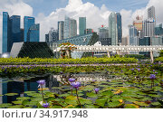 Singapore, Republic of Singapore, city view with skyscrapers of the business district in Marina Bay during Covid-19. Стоковое фото, агентство Caro Photoagency / Фотобанк Лори