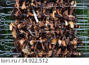 Грибы сушеные опята на шампурах. Запас на зиму. Стоковое фото, фотограф Анатолий Матвейчук / Фотобанк Лори