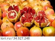 The pomegranate /'p?m?græn?t/, botanical name Punica granatum, is... (2008 год). Редакционное фото, фотограф David Henley / Pictures From History / age Fotostock / Фотобанк Лори