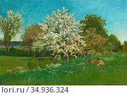 Torna Oscar - Blossoming Fruit Tree - Swedish School - 19th Century. Редакционное фото, фотограф Artepics / age Fotostock / Фотобанк Лори
