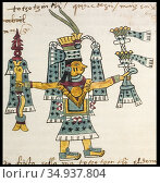 Month Tozoztontli in Aztec calendar. Codex Tudela, 16th-century pictorial... Стоковое фото, фотограф Juan García Aunión / age Fotostock / Фотобанк Лори