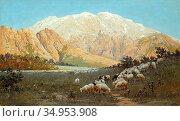 Zommer Richard Karlovich - Sheep Grazing on the Mountainside - Russian... Стоковое фото, фотограф Artepics / age Fotostock / Фотобанк Лори