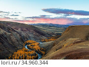 The Chuya steppe, the Chuya river at sunset in autumn. Altai Republic, Russia. Стоковое фото, фотограф Наталья Волкова / Фотобанк Лори