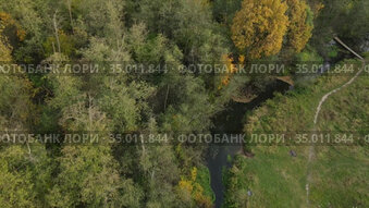 Aerial video of small forest river in central russia