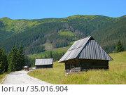 Woode shpherd's huts in the Chocholowska Clearing. Стоковое фото, фотограф Ignacy Wojciech Pilch / age Fotostock / Фотобанк Лори