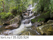 Waterfall, Sinharaja National Park Rain Forest, Sinharaja Forest Reserve... Стоковое фото, фотограф Alberto Carrera Anaya / easy Fotostock / Фотобанк Лори
