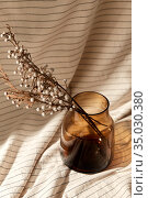 decorative dried flowers in brown glass vase. Стоковое фото, фотограф Syda Productions / Фотобанк Лори