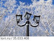 Уличный фонарь на фоне голубого неба и покрытых инеем ветвей березы в городском парке. Стоковое фото, фотограф Григорий Писоцкий / Фотобанк Лори