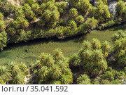 Kretische Dattelpalmen und der Fluss Megalopotamos in der Schlucht... Стоковое фото, фотограф Peter Schickert / age Fotostock / Фотобанк Лори