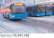 Buses in the winter at the bus station. Стоковое фото, фотограф Юрий Бизгаймер / Фотобанк Лори