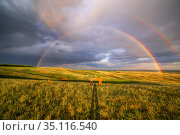 two elderly men raised their hands up and rejoice beautiful big rainbow spring day. Стоковое фото, фотограф Акиньшин Владимир / Фотобанк Лори
