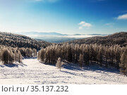The Altai mountains on a sunny frosty winter day. Altai Republic, Western Siberia, Russia. Стоковое фото, фотограф Наталья Волкова / Фотобанк Лори