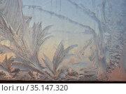 Морозные узоры на окне на восходе солнца. Стоковое фото, фотограф Наталья Горкина / Фотобанк Лори