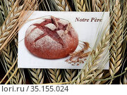 Religious image and ears of wheat. France. Стоковое фото, фотограф Fred de Noyelle / Godong / age Fotostock / Фотобанк Лори