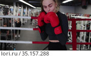 Young attractive woman training her boxing on the ring in the gym to the camera. Стоковое видео, видеограф Константин Шишкин / Фотобанк Лори