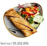 Appetizing savory stuffed thin pancake with vegetable salad. Стоковое фото, фотограф Яков Филимонов / Фотобанк Лори