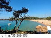 El Castell beach, Costa Brava, Girona province, Catalonia, Spain. Стоковое фото, фотограф Josep Curto / easy Fotostock / Фотобанк Лори