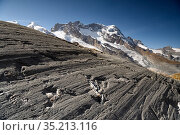 Glacial striations on rock near snout of Findel Glacier, created by abrasion at base of glacier when rocks are dragged over the bedrock. Zermatt, Valais, Switzerland. September 2019. Стоковое фото, фотограф Graham Eaton / Nature Picture Library / Фотобанк Лори