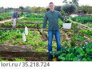 Amateur gardener carrying vegetable harvest in kitchen garden. Стоковое фото, фотограф Яков Филимонов / Фотобанк Лори