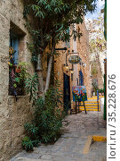 A street in the artists ' quarter in the ancient city of Jaffa. Tel Aviv, Israel (2015 год). Редакционное фото, фотограф Наталья Волкова / Фотобанк Лори