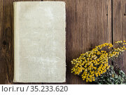 Herbal alternative medicine, medicinal dry herb Tanacetum for phytotherapy, bunch of dried tansy plant and old vintage herbalist recipe book on natural wooden background with copy space. Стоковое фото, фотограф Светлана Евграфова / Фотобанк Лори