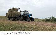 Tractor with hay bales driving through an agricultural field after harvesting grain crops. Haymaking. Редакционное видео, видеограф Кекяляйнен Андрей / Фотобанк Лори