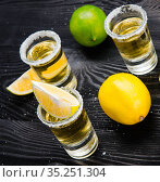 Tequila drink served in glasses with lime and salt. Стоковое фото, фотограф Elnur / Фотобанк Лори