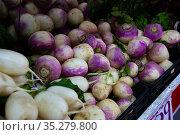Turnips on market counter. Стоковое фото, фотограф Яков Филимонов / Фотобанк Лори