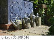 Metal watering cans in English cottage garden. Стоковое фото, фотограф Dariusz Gora / easy Fotostock / Фотобанк Лори