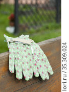 Garden gloves on bench in garden. Стоковое фото, фотограф Dariusz Gora / easy Fotostock / Фотобанк Лори