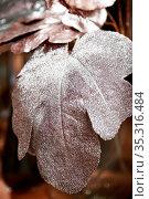 Floral plant background, texture silvery pink artificial lush shiny leaves. Стоковое фото, фотограф Светлана Евграфова / Фотобанк Лори