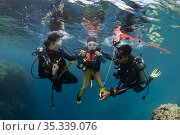 8 year-old girl and mother diving with instructor holding safety ... Стоковое фото, фотограф Colin Marshall / age Fotostock / Фотобанк Лори