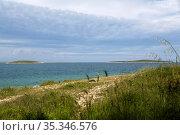 Croatia, Prementura - Cape Kamenjak nature reserve, at the southern tip of Istria (2016 год). Редакционное фото, агентство Caro Photoagency / Фотобанк Лори