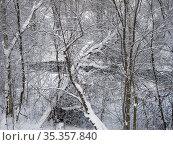Small river in winter. Стоковое фото, фотограф Argument / Фотобанк Лори