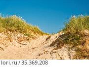 Zugang zum Strand auf Sand zwischen Dünen am Meer im Sommer. Стоковое фото, фотограф Zoonar.com/Robert Kneschke / age Fotostock / Фотобанк Лори