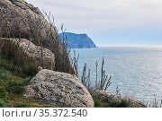 View of the winter sea from a high cliff. Стоковое фото, фотограф Евгений Харитонов / Фотобанк Лори