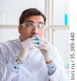 Young chemist student working in lab on chemicals. Стоковое фото, фотограф Elnur / Фотобанк Лори