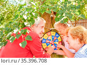 Gruppe Senioren an der Dartscheibe beim Punkte zählen im Sommer im... Стоковое фото, фотограф Zoonar.com/Robert Kneschke / age Fotostock / Фотобанк Лори