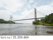 Suspension bridge over Oyapock River, bridge connects French Guiana with Brazil. French Guiana. 2015. Стоковое фото, фотограф Pascal Kobeh / Nature Picture Library / Фотобанк Лори