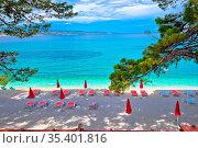 Idyllic pine trees and pebble beach in Baska Voda view, Makarska riviera... Стоковое фото, фотограф Zoonar.com/Dalibor Brlek / easy Fotostock / Фотобанк Лори