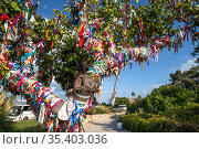 Tree with colored ribbons of wishes near Church of the Prophet Elijah in Protaras, Republic of Cyprus (2019 год). Стоковое фото, фотограф Володина Ольга / Фотобанк Лори