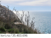 View of the winter sea from a high coastal cliff. Стоковое фото, фотограф Евгений Харитонов / Фотобанк Лори