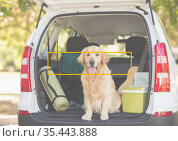 Composition of dog sitting in open boot of car with yellow outline rectangle frame over face. Стоковое фото, агентство Wavebreak Media / Фотобанк Лори