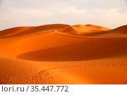 Stunning sand dunes of Sahara desert in Merzouga, Morocco. Стоковое фото, фотограф Zoonar.com/Pawel Opaska / easy Fotostock / Фотобанк Лори