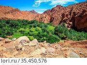 Unique rock formations in the valley leading to Dades Gorge, Morocco. Стоковое фото, фотограф Zoonar.com/Pawel Opaska / easy Fotostock / Фотобанк Лори