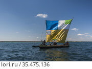 Pirogue, a traditional Madagascar sailing boat using a dugout canoe... Стоковое фото, фотограф Matthew Williams-Ellis / age Fotostock / Фотобанк Лори