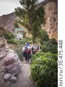 Colca Canyon 2 day trek, Peru. Стоковое фото, фотограф Matthew Williams-Ellis / age Fotostock / Фотобанк Лори