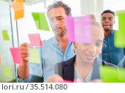 Start-Up Team bei der Analyse von Ideen auf Zetteln im Brainstorming... Стоковое фото, фотограф Zoonar.com/Robert Kneschke / age Fotostock / Фотобанк Лори
