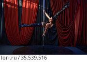 Showgirl in black lingerie, pole dance, striptease. Стоковое фото, фотограф Tryapitsyn Sergiy / Фотобанк Лори