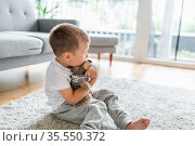 Cute child at home playing with his teddy bear. Стоковое фото, фотограф Zoonar.com/Tomas Anderson / easy Fotostock / Фотобанк Лори